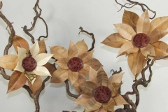 Blüten  - Thomas Häckel