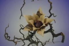 Blüte aus Nussbaum - Thomas-Häckel