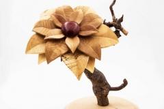 Blüte aus verschiedene Edelhölzer 240mm Durchmesser - Niklas Dettke