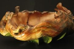 Schale aus Apfel - Thomas Häckel